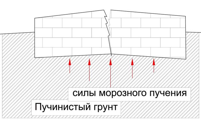 moroznoye-pucheniye2.jpg